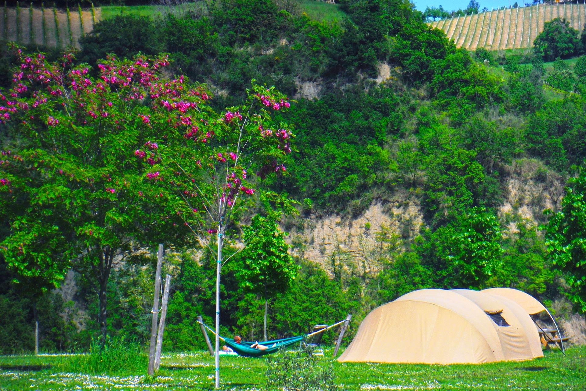 Huurtent-B&B-Agricamp-Picobello-Shell-inkijk-minicamping-bed&breakfast-trekking